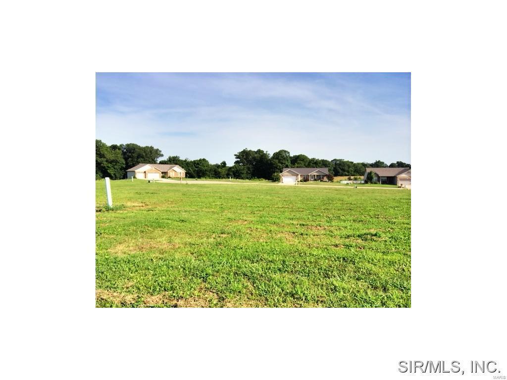 435 Bluff Meadows Drive - Photo 1