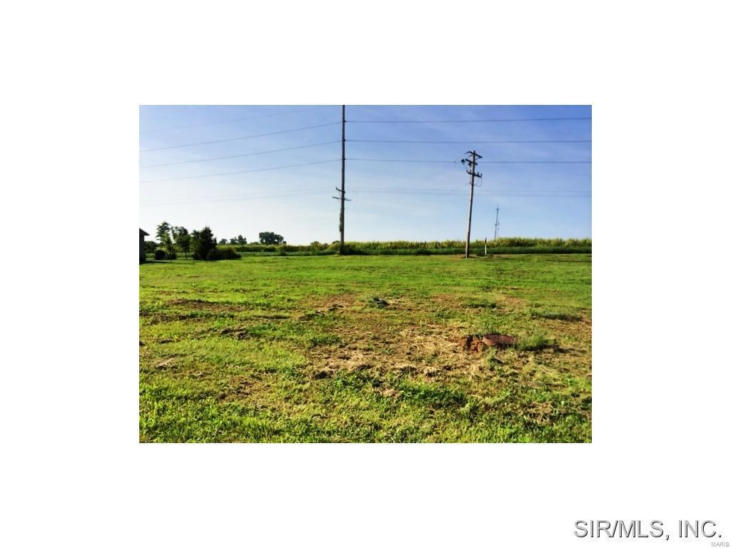 436 Bluff Meadows Drive - Photo 1