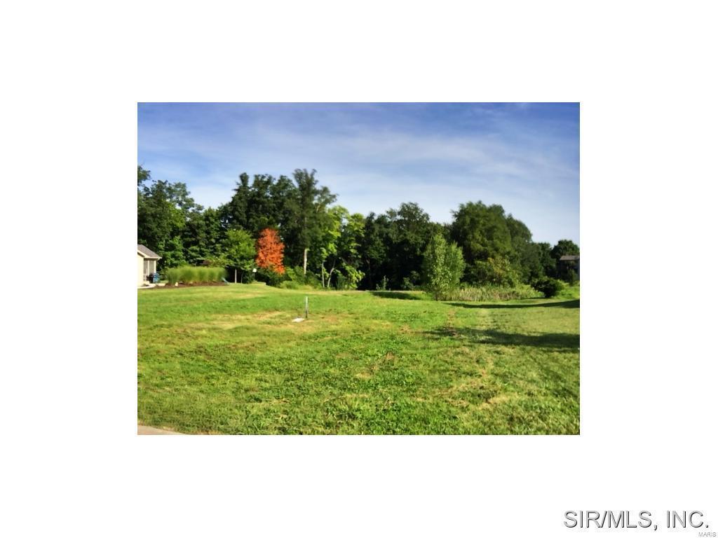 419 Bluff Meadows Drive - Photo 1