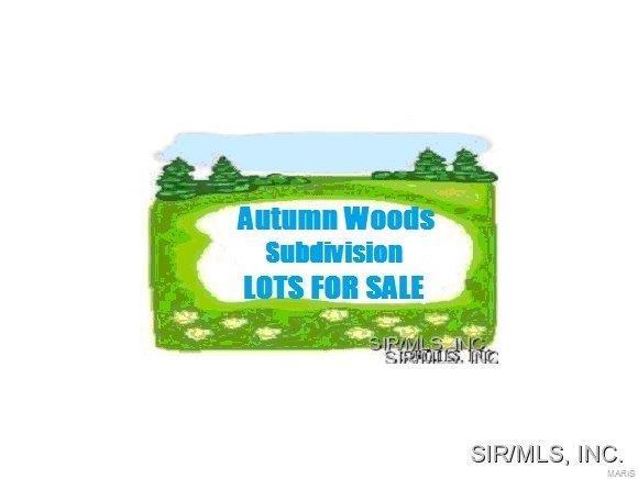 2133 Autumn Woods Road, Belleville, IL 62226 (#4314458) :: Sue Martin Team