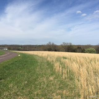 15 Lot # Hickory Woods, Washington, MO 63084 (#15020316) :: Holden Realty Group - RE/MAX Preferred