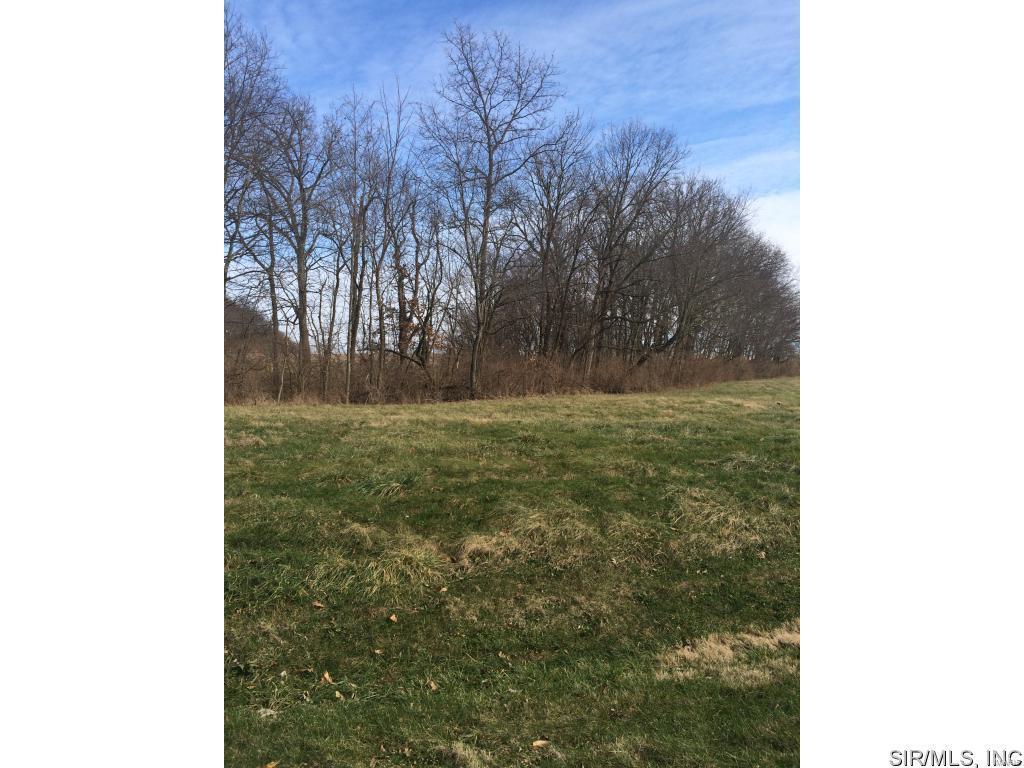 3832 Meadow Lane - Photo 1