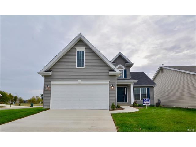 248 Longridge Circle, Belleville, IL 62221 (#17041805) :: Clarity Street Realty