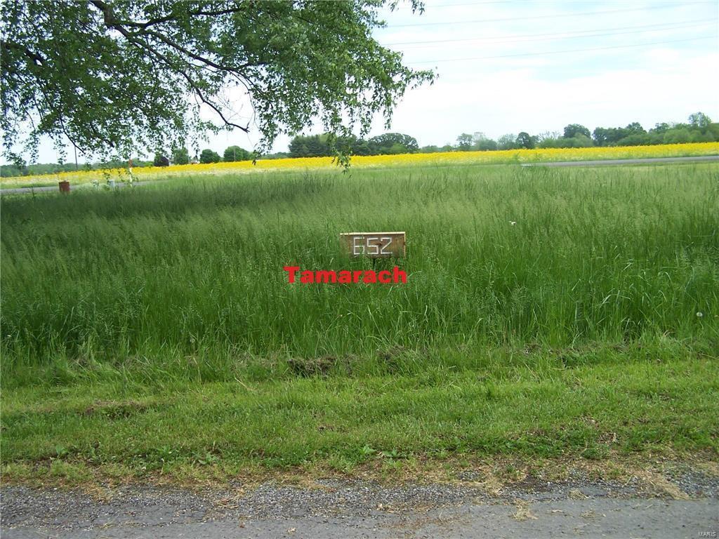 652 Tamarach Drive - Photo 1