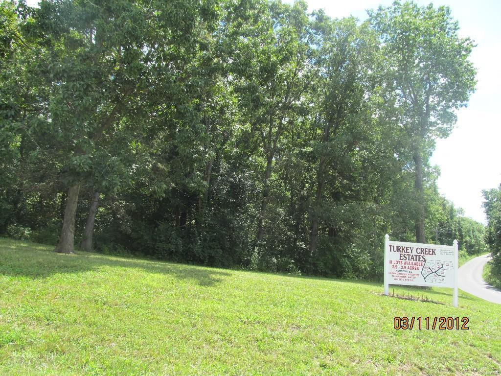 190 Turkey Creek Road - Photo 1