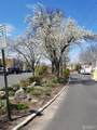 161 Evergreen Road - Photo 17