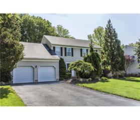 99 Morganville Road, Old Bridge, NJ 07747 (MLS #1621662) :: The Dekanski Home Selling Team