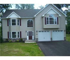 451 2ND Avenue, Piscataway, NJ 08854 (MLS #1622536) :: The Dekanski Home Selling Team
