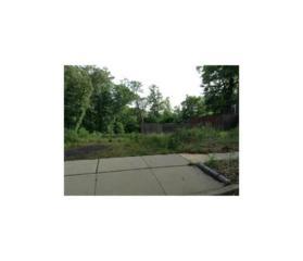 32 Kathleen Place, Edison, NJ 08817 (MLS #1701702) :: The Dekanski Home Selling Team