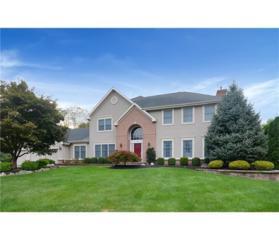 20 Kinglet Drive N, Plainsboro, NJ 08512 (MLS #1703698) :: The Dekanski Home Selling Team