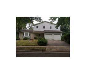 4 Starodub Drive, Milltown, NJ 08850 (MLS #1704517) :: The Dekanski Home Selling Team
