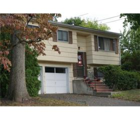 1569 Grant Avenue, South Plainfield, NJ 07080 (MLS #1705035) :: The Dekanski Home Selling Team