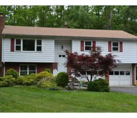 135 Fresh Ponds Road, South Brunswick, NJ 08831 (MLS #1706351) :: The Dekanski Home Selling Team