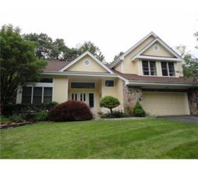 4 Angelica Court, South Brunswick, NJ 08540 (MLS #1708755) :: The Dekanski Home Selling Team