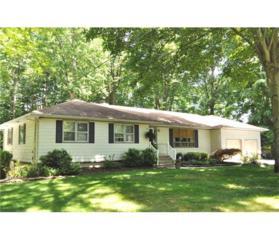 130 Old Beekman Road, South Brunswick, NJ 08852 (MLS #1708891) :: The Dekanski Home Selling Team