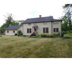 10 Old Nursery Lane, South Brunswick, NJ 08540 (MLS #1708901) :: The Dekanski Home Selling Team