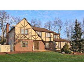 7 Castle Court, North Brunswick, NJ 08902 (MLS #1709175) :: The Dekanski Home Selling Team