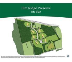 6 Elm Ridge Court, Monroe, NJ 08831 (MLS #1709363) :: The Dekanski Home Selling Team