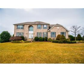 5 Annie Lane, Monroe, NJ 08831 (MLS #1709506) :: The Dekanski Home Selling Team