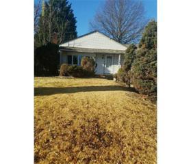 124 Oakmoor Avenue, South Plainfield, NJ 07080 (MLS #1709607) :: The Dekanski Home Selling Team