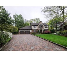 4 Blythewood Court, North Brunswick, NJ 08902 (MLS #1709926) :: The Dekanski Home Selling Team