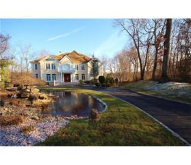 4 Lakeview Court, North Brunswick, NJ 08902 (MLS #1709960) :: The Dekanski Home Selling Team