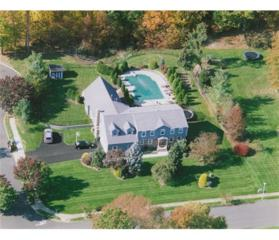 20 Florence Drive, Monroe, NJ 08831 (MLS #1710103) :: The Dekanski Home Selling Team