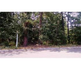 17 Cleveland Avenue, Monroe, NJ 08831 (MLS #1711674) :: The Dekanski Home Selling Team