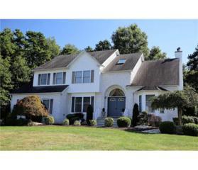 2 Alex Court, Monroe, NJ 08831 (MLS #1711843) :: The Dekanski Home Selling Team