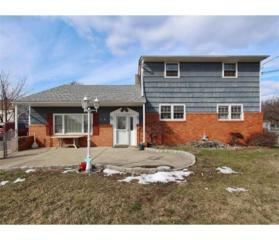 175 Oak Tree Road, South Plainfield, NJ 07080 (MLS #1712131) :: The Dekanski Home Selling Team