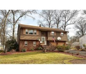 159 Brewster Avenue, Piscataway, NJ 08854 (MLS #1712254) :: The Dekanski Home Selling Team