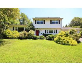 32 Agate Road, East Brunswick, NJ 08816 (MLS #1712559) :: The Dekanski Home Selling Team