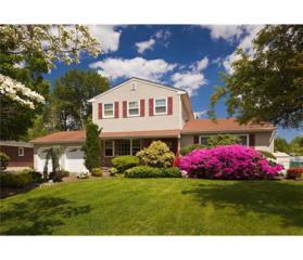 14 Elizabeth Avenue, East Brunswick, NJ 08816 (MLS #1712589) :: The Dekanski Home Selling Team
