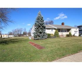 201 S Plainfield Avenue, South Plainfield, NJ 07080 (MLS #1712767) :: The Dekanski Home Selling Team