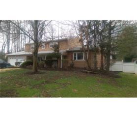 477 Darwin Boulevard, Edison, NJ 08820 (MLS #1712780) :: The Dekanski Home Selling Team