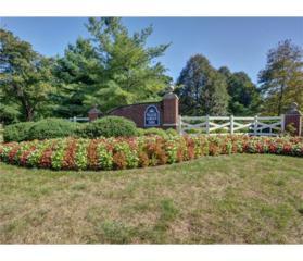 46 Elsie Drive, Plainsboro, NJ 08536 (MLS #1712782) :: The Dekanski Home Selling Team