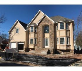 40 SE Mount Pleasant Avenue SE, Edison, NJ 08820 (MLS #1712880) :: The Dekanski Home Selling Team