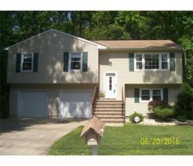 17 New York Boulevard, Edison, NJ 08820 (MLS #1713006) :: The Dekanski Home Selling Team