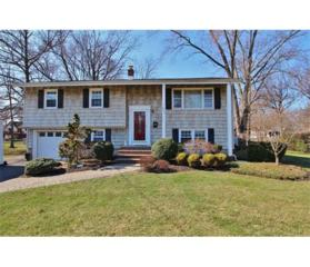 400 Cotton Street, South Plainfield, NJ 07080 (MLS #1713011) :: The Dekanski Home Selling Team