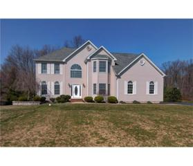 19 Renk Farm Drive, South Brunswick, NJ 08852 (MLS #1713057) :: The Dekanski Home Selling Team