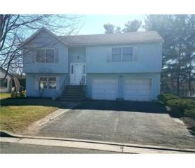 66 Diana Drive, South Plainfield, NJ 07080 (MLS #1713080) :: The Dekanski Home Selling Team