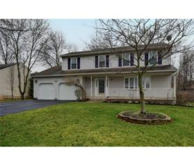 154 Mountain Avenue, Piscataway, NJ 08854 (MLS #1713089) :: The Dekanski Home Selling Team