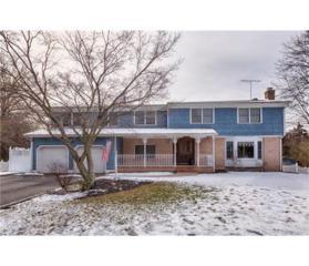 6 Quince Place, North Brunswick, NJ 08902 (MLS #1713269) :: The Dekanski Home Selling Team