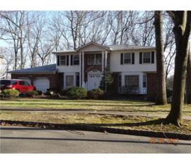 48 Oak Crest Drive, East Brunswick, NJ 08816 (MLS #1713311) :: The Dekanski Home Selling Team