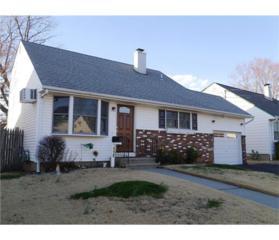 119 Brown Avenue, Iselin, NJ 08830 (MLS #1713317) :: The Dekanski Home Selling Team