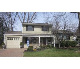5 Dolores Drive, Edison, NJ 08817 (MLS #1713461) :: The Dekanski Home Selling Team