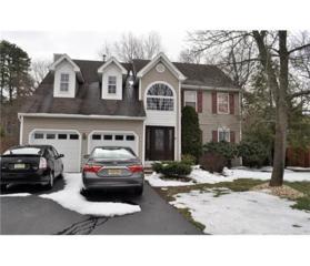 6 Jaime Court, Old Bridge, NJ 08857 (MLS #1713482) :: The Dekanski Home Selling Team