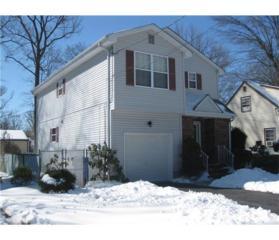 37 E Grant Avenue, Colonia, NJ 07067 (MLS #1713489) :: The Dekanski Home Selling Team