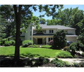49 Independence Drive, East Brunswick, NJ 08816 (MLS #1713588) :: The Dekanski Home Selling Team