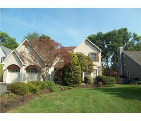 22 Jason Court, Colonia, NJ 07067 (MLS #1713669) :: The Dekanski Home Selling Team